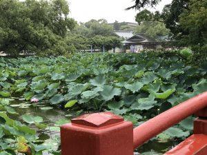 鎌倉江の島七福神08
