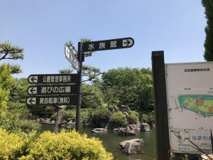 しながわ水族館017
