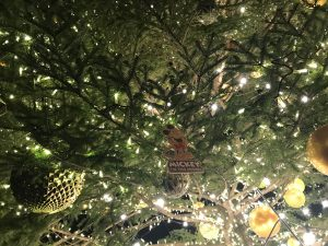 クリスマス2018-027