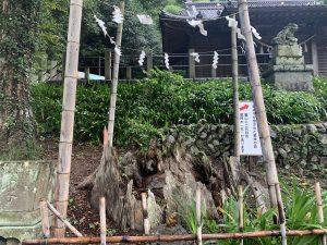 高尾山006