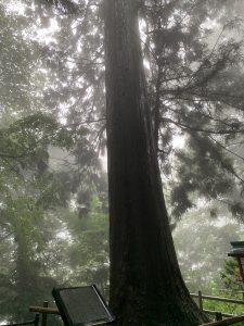 高尾山038